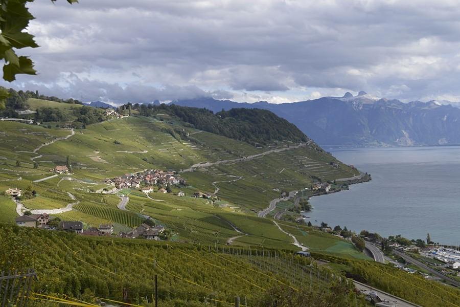 Run Mate: The first relay race around Lake Geneva!